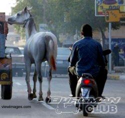 Скутеры – выбор Ирака